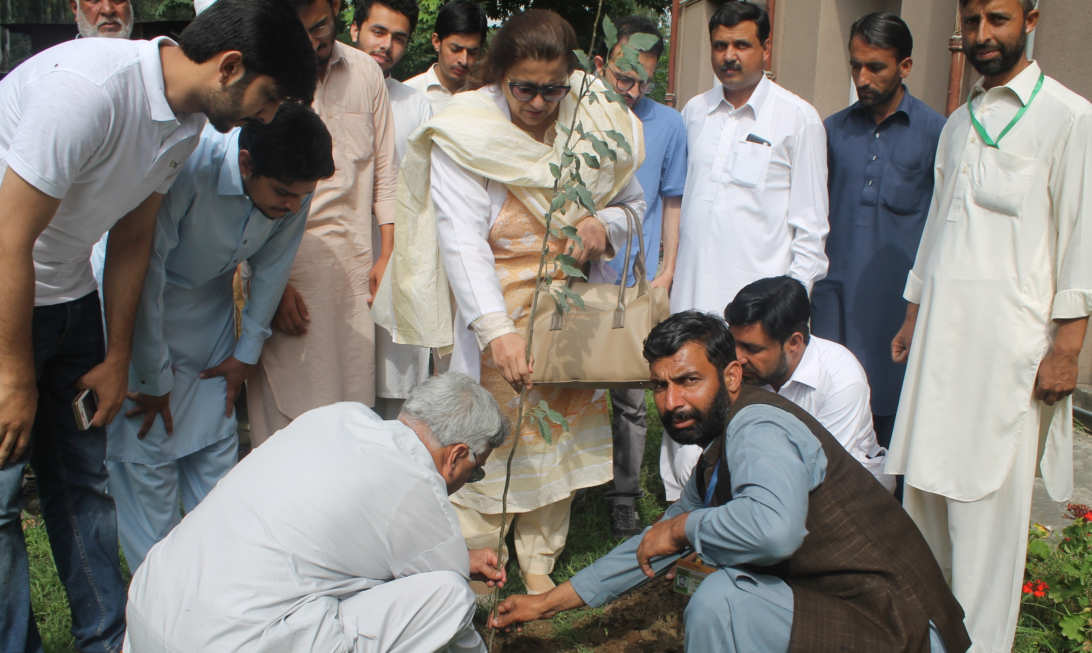 Tree Plantation on Independence day